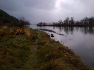 River Eachaig Fisheries Syndicate